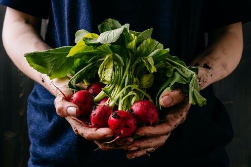 Benefits Of Taking Health Food