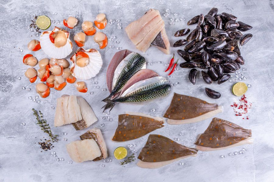Know more information regarding other types of sea food